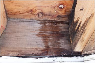 構造的に⼤切な垂⽊や野地板などの腐⾷し構造が弱くなる